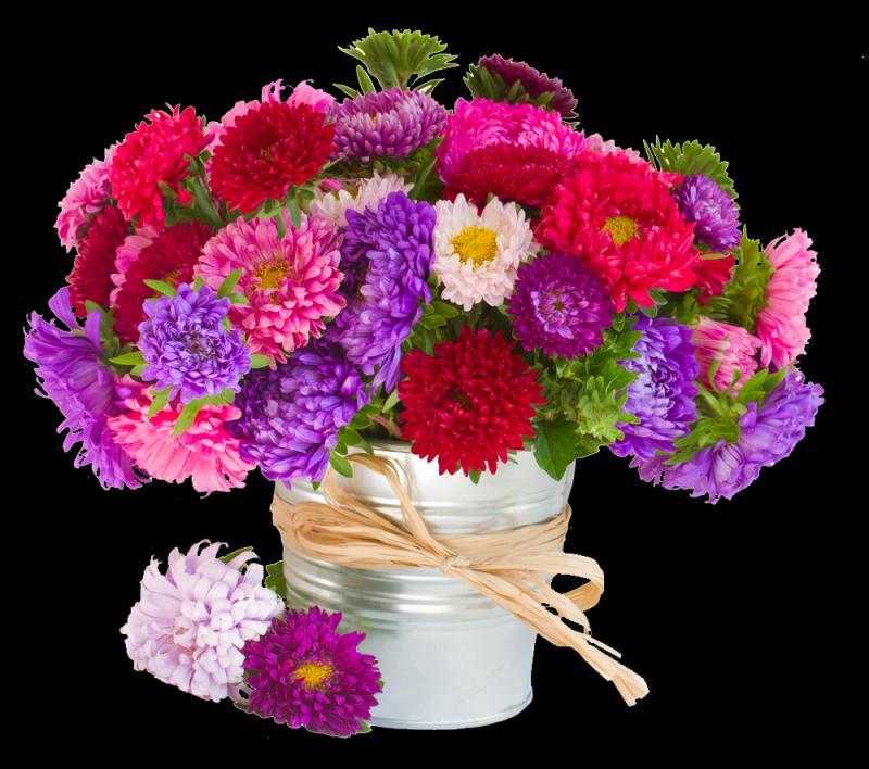 Поздравляем в праздником весны!